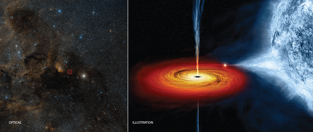 "A Stellar Mass Black Hole. The image on the left, labeled ""Optical"", is a visible light image of a region of the constellation Cygnus. At the center a red box indicates the position of the X-ray source Cygnus X-1. The figure on the left, labeled ""Illustration"", is a rendering of the black hole and its blue companion star. The blue star is at right, with material streaming away from the surface toward the red and orange colored disk surrounding the black hole. Jets of material, oriented perpendicular to the disk, are moving away from the black hole located at the center of the disk."
