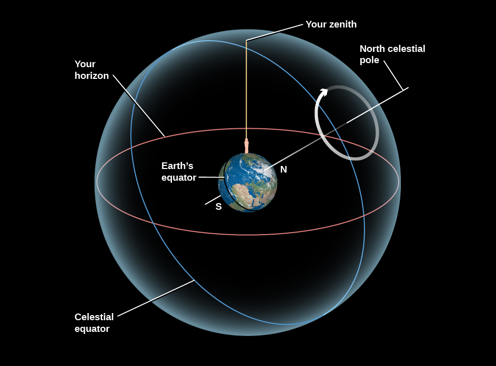 """Circles on the Celestial Sphere. At the center of this figure the Earth is shown with the Equator, North, and South poles labeled. The Earth is tilted so that the North Pole is pointing toward the upper right. The Earth is embedded within a sphere representing the sky. A white line is drawn projecting from the North Pole onto the sky, at which point it is labeled the """"North celestial pole"""". A white circular arrow is drawn counter-clockwise around the North celestial pole indicating the apparent motion of the stars. The equator is projected onto the sky, drawn in white and is labeled the """"Celestial equator"""". An oversized human figure stands in North America, with a vertical line drawn upward and intersects the sky sphere at a point labeled """"Your zenith"""", and is drawn in yellow. The horizon as seen from the vantage point of the figure is projected onto the sky, labeled """"Your horizon"""", and is drawn in red. This horizon line splits the sky roughly in half from the observer's point of view."""
