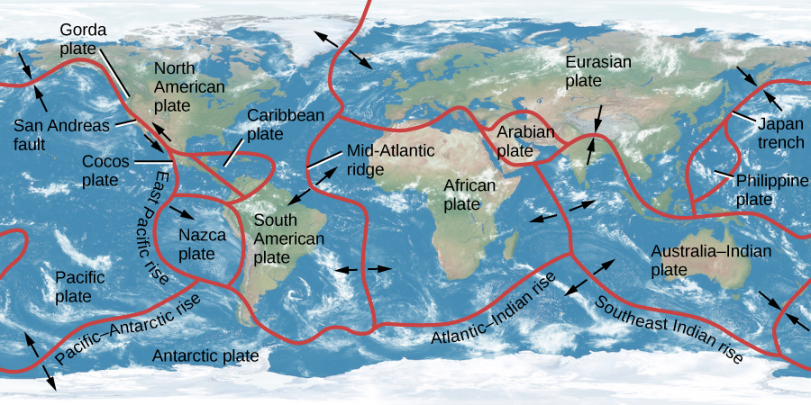 Diagram of Earth's Continental Plates. The outlines of the various plates are drawn in red. The plate names are given in black. Subduction zones are shown as converging arrows, and rift zones are shown as diverging arrows. At far-left is the Pacific plate, with the San Andreas fault and East Pacific Rise labeled. Next, straddling the equator are the Cocos, Caribbean, and Nazca plates. North and to the east of these are the North and South American plates. Adjacent to the North American plate is the Eurasian plate, and next to the South American plate is the African Plate. The Mid-Atlantic ridge (rift zone) is the boundary of the American plates and the African and Eurasian plates. Between Eurasia and Africa is the Arabian plate. Below the eastern part of the Eurasian plate is the Australia-Indian plate (subduction zone). The African plate and the Australia-Indian plate are bounded by a rift zone. At far-right between the western Pacific plate and the eastern Eurasian plate is the Phillipine plate. Dominating the bottom of the illustration is the Antarctic plate, with the Pacific-Antarctic rise (rift zone), Atlantic-Indian rise, and the Southeast Indian Rise (rift zone) indicated.