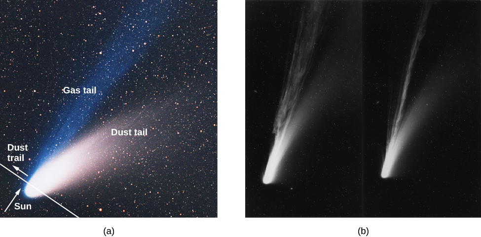 Comet Hale-Bopp's Tails. Panel (a), at left, is an image of Hale-Bopp the nucleus is at lower left, with the white dust tail (labeled) extending to center-right, and the blue ion tail (labeled) extending to top-center. A white line is drawn across the nucleus toward the left indicating the direction of motion of the comet. An arrow points to the direction of the Sun at lower left. Panel (b) shows two B+W images of Comet Mrkos at different times with long dust and ion tails.