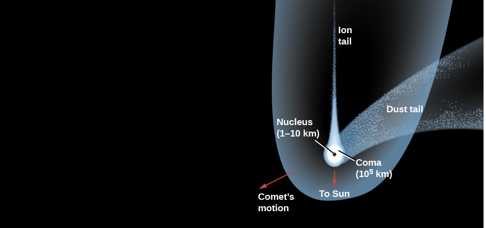 """Diagram of a Typical Comet. Just below left of center, the """"Nucleus (1-10 km)"""" is drawn as a black dot. Surrounding the nucleus is the """"Coma (105 km)"""", drawn in white. Surrounding the coma and extending vertically to the top of the image is the thin """"Ion tail"""", drawn in white. Beginning at the coma and curving away to the right is the wide """"Dust tail"""", drawn in semi-transparent white. Surrounding the comet and extending in the same direction as the ion tail is the """"Hydrogen envelope (107 km)"""", drawn in semi-transparent white. A red arrow points downward from the nucleus labeled """"To Sun"""". Finally, a red arrow points from the nucleus toward the lower left (opposite to the direction of the dust tail) and is labeled """"Comet's motion""""."""