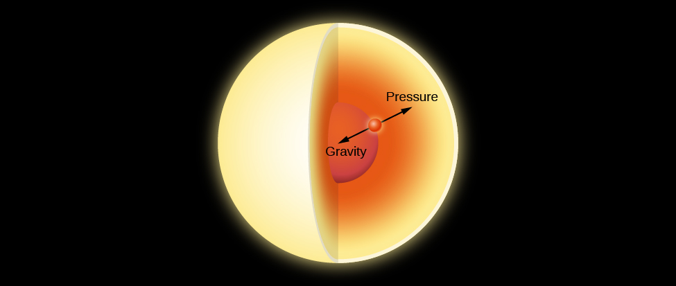 "Illustration of Hydrostatic Equilibrium. In this cutaway drawing of a star an imaginary point, drawn as a red dot, is placed about halfway between the center and the surface. Two equal length arrows are drawn from the red dot. One arrow points toward the center of the star and is labeled ""Gravity"". The other arrow points toward the surface of the star and is labeled ""Pressure""."
