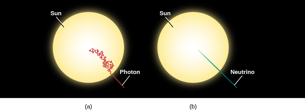 "Diagram of Photon and Neutrino Paths in the Sun. At left, (a) shows the Sun as a yellow disk. Starting at the center of the Sun, the path of a photon is drawn in red and labeled ""Photon"". The photon path zigzags, curves and twists back on itself many, many times before reaching the Sun's surface and then travels away into space in a straight line. At right, (b) also shows the Sun as a yellow disk. Starting at the center of the Sun the path of a neutrino is drawn in blue and labeled ""Neutrino"". The neutrino path is a straight line from the center to the surface and outward into space."