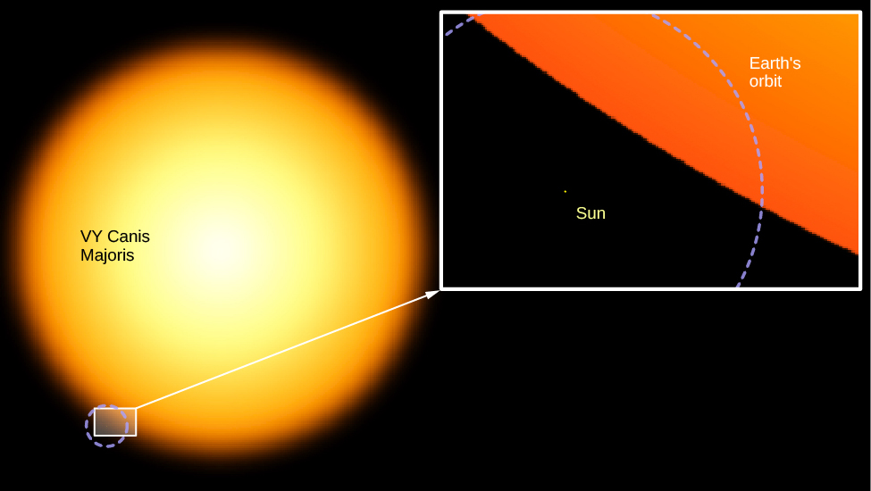 Illustration of the Sun and a Supergiant Star. At left, the supergiant star VY Canis Majoris is shown as a large yellow sphere. At the bottom left edge of the supergiant a small rectangle is drawn. This area is enlarged in the inset at right. The Sun is shown as a tiny dot surrounded by a dashed circle representing Earth's orbit. The surface of the supergiant is drawn running diagonally across the upper right half of the enlargement. The Sun and the orbit of Earth would fit inside VY Canis Majoris many times over.