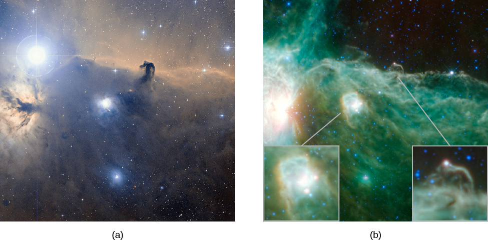 """Visible and Infrared Images of the Horsehead Nebula in Orion. At left, (a) is a visible light image of the """"horsehead"""", with the very bright star Zeta Orionis at upper left. The horsehead shape is seen silhouetted against the bright red nebulous background in the upper half of the image. Fainter swirls of gas and dark dust are seen in the lower half. At right, (b) is an infrared image of the same region. The infrared image is a near reversal of the visible image. The bright star is barely seen. The horsehead is now a bright shape against a dark background, and the lower half of the image is bright with wisps and swirls of gas and a bright star forming nebula near the center. The insets in the infrared image show the horsehead and the bright nebula in more detail."""