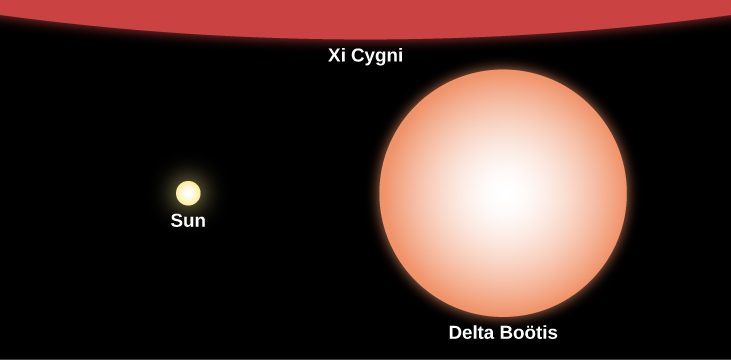 """Relative Sizes of Stars Compared to the Sun. In this illustration the Sun is represented at center-left with a yellow disk labeled """"Sun."""" The giant star labeled """"Delta Boötis"""" is drawn at right with an orange disk about 10 times the size of the Sun's disk. At the top of this image, covering the entire upper portion of the figure, a small part of the supergiant labeled """"Xi Cygni"""" is shown in red."""