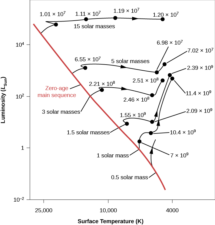 """Evolutionary Tracks of Stars of Different Masses. In this plot the vertical axis is labeled """"Luminosity (LSun)"""" and goes from 10-2 at the bottom to over 104 at the top. The horizontal axis is labeled """"Surface Temperature (K)"""" and goes from 25,000 on the left to 4,000 on the right. The """"Zero-age main sequence"""" is drawn as a diagonal red line beginning above L = 104 at the upper left of the image down to T ~ 4000 at the lower right. Six evolutionary tracks are drawn. Beginning at the top, a star of """"15 solar masses"""" is plotted. It leaves the main sequence above L ~ 104 and T ~ 25,000. The track moves rightward across the top of the plot. The star maintains a relatively constant luminosity, but its surface temperature decreases with time. At """"1.01 × 107"""" years its temperature is about 20,000 K. At """"1.11 × 107"""" years it has fallen to about 15,000 K. At """"1.19 × 107"""" years T is about 9000 K, and the track ends at """"1.2 × 107"""" years near 4000 K. Next, a star of """"5 solar masses"""" is plotted beginning near L ~ 103, where it leaves the main sequence. The star maintains a relatively constant luminosity, but its surface temperature decreases with time. At """"6.55 × 107"""" years its temperature is about 12,000 K. but its surface temperature decreases with time. At """"2.39 × 107"""" years it has fallen to about 5000 K. Then the luminosity rises slightly to the final plotted point at """"7.02 × 107"""" years near 4000 K. Next, a star of """"3 solar masses"""" leaves the main sequence near L = 102 and 15,000 K. After """"2.21 × 108"""" years its temperature has fallen to near 11,000 K. After """"2.46 × 108"""" years its temperature has dropped to near 6000 K. Then, its luminosity increases by about a factor of ten where its curve ends at """"2.51 × 107"""" years and 5000 K. Next, a star of """"1.5 solar masses"""" leaves the main sequence near L = 30 and 9000 K. After """"1.55 × 109"""" years its temperature has fallen to near 7500 K. After """"2.09 × 109"""" years, its temperature has dropped to near 5000 K. Then, its luminosity increases"""