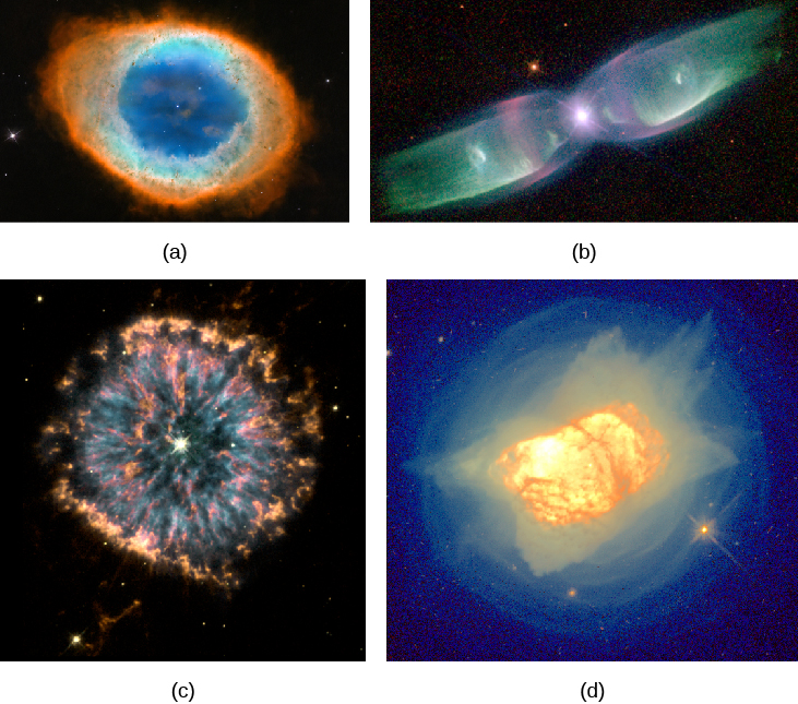 """Gallery of Planetary Nebulae. Panel (a), at the upper left corner of this image, shows M 57, a fairly symmetrical ring of glowing gas surrounding the faint central star. Panel (b), at the upper right corner of this image, shows M 2-9, which appears like an elongated butterfly. The central star being the body and the gaseous """"wings"""" to the left and right of the star. At the lower left corner in panel (c) is N G C 6751. This planetary nebula has streams and clumps of bright gas superimposed over a symmetric ring structure surrounding the central star. Finally, panel (d) at the lower right corner presents N G C 7027. This nebula appears as an indistinct, mottled blob of gas surrounded by multiple faint shells of material."""