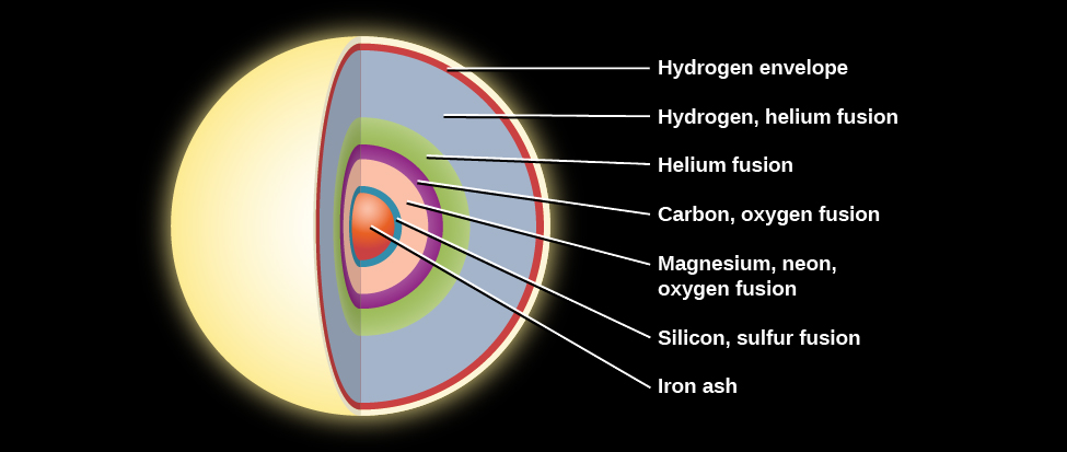 "Interior Structure of a Massive Star before the End of its Life. The onion like layers of a massive star are illustrated as follows: the outermost layer is composed of hydrogen, followed by another hydrogen layer, a helium layer, an oxygen layer, a neon layer, a magnesium layer, a silicon layer, and culminating in a core of iron ""ash""."