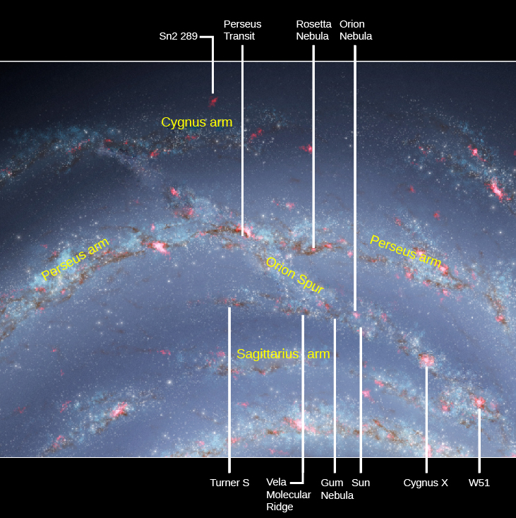 """The Sun and the Orion Spur. Portions of three spiral arms of the Milky Way are shown in this illustration. The """"Cygnus arm"""" at top, the """"Perseus arm"""" at center and the """"Sagittarius arm"""" at bottom. The """"Orion spur"""" is a stream of stars and gas runs from the Cygnus arm diagonally downward to the right through the Perseus arm and on to the Sagittarius arm. The Sun is located in the portion of the spur between the Perseus and Sagittarius arms. Objects of interest are indicated with arrows from above and below the figure. At top, from left to right are: """"Sn2 289"""", """"Perseus transit"""", """"Rosetta nebula"""" and the """"Orion nebula"""". At bottom, from left to right are: """"Turner S"""", """"Vela molecular ridge"""", """"Gum nebula"""", """"Sun"""", """"Cygnus X-1"""" and """"W51""""."""