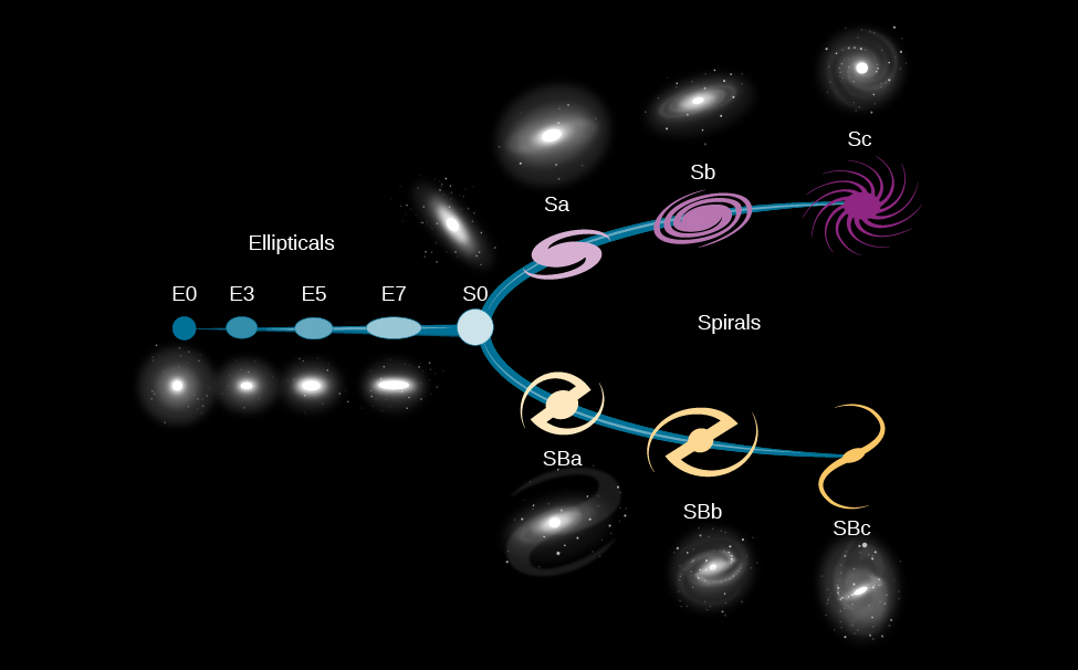 "Hubble Classification of Galaxies. Sometimes referred to as the ""tuning fork diagram"", this figure illustrates Hubble's classification of galaxies. From left to right are the ""Ellipticals"", beginning with the spherical E0, slightly oval E3, flatter oval E5 to the very elongated oval E7. Below each illustrated type is an image of a galaxy of that type. At center is the more circular S0, from which the line splits into two parts (hence the tuning fork reference) and labeled ""Spirals"". Above are the regular spirals. From left to right beginning with the short armed Sa, longer armed Sb and the open, multiple armed Sc. Above each illustrated type is an image of a galaxy of that type. Below are the barred spirals. From left to right beginning with the short bar SBa, longer bar SBb and the open, long bar SBc. Below each illustrated type is an image of a galaxy of that type."