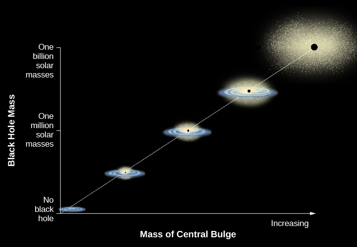 """In this plot the vertical axis is labeled """"Black Hole Mass"""". The scale goes from """"No black hole"""" at bottom, """"One million solar masses"""" in the middle and """"One billion solar masses"""" at top. The horizontal axis is labeled: """"Mass of Central Bulge"""". The scale is arbitrary, with an arrow pointing to the right labeled """"Increasing"""". A straight white line is drawn from lower left to upper right with illustrations of galaxies along its length. At bottom left is a small spiral galaxy. Moving upward along the line, the galaxies increase in size as do the black dots at the center of each representing black holes. The final image at upper right is a very large elliptical with a very large black hole."""