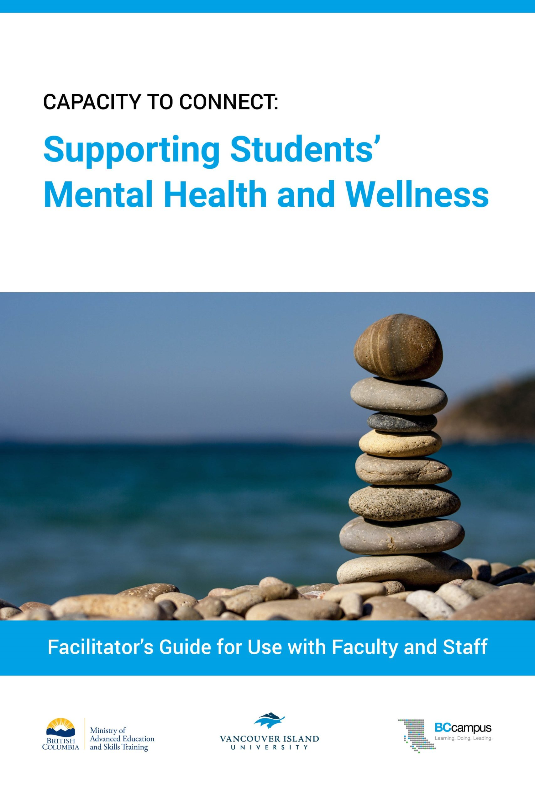 Cover image for Capacity to Connect: Supporting Students' Mental Health and Wellness