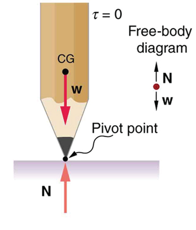 A vertical pencil balanced at its sharp end is shown. The weight of the pencil is acting at its center of gravity and is in the line with the normal reaction N at the pivot point of the pencil.