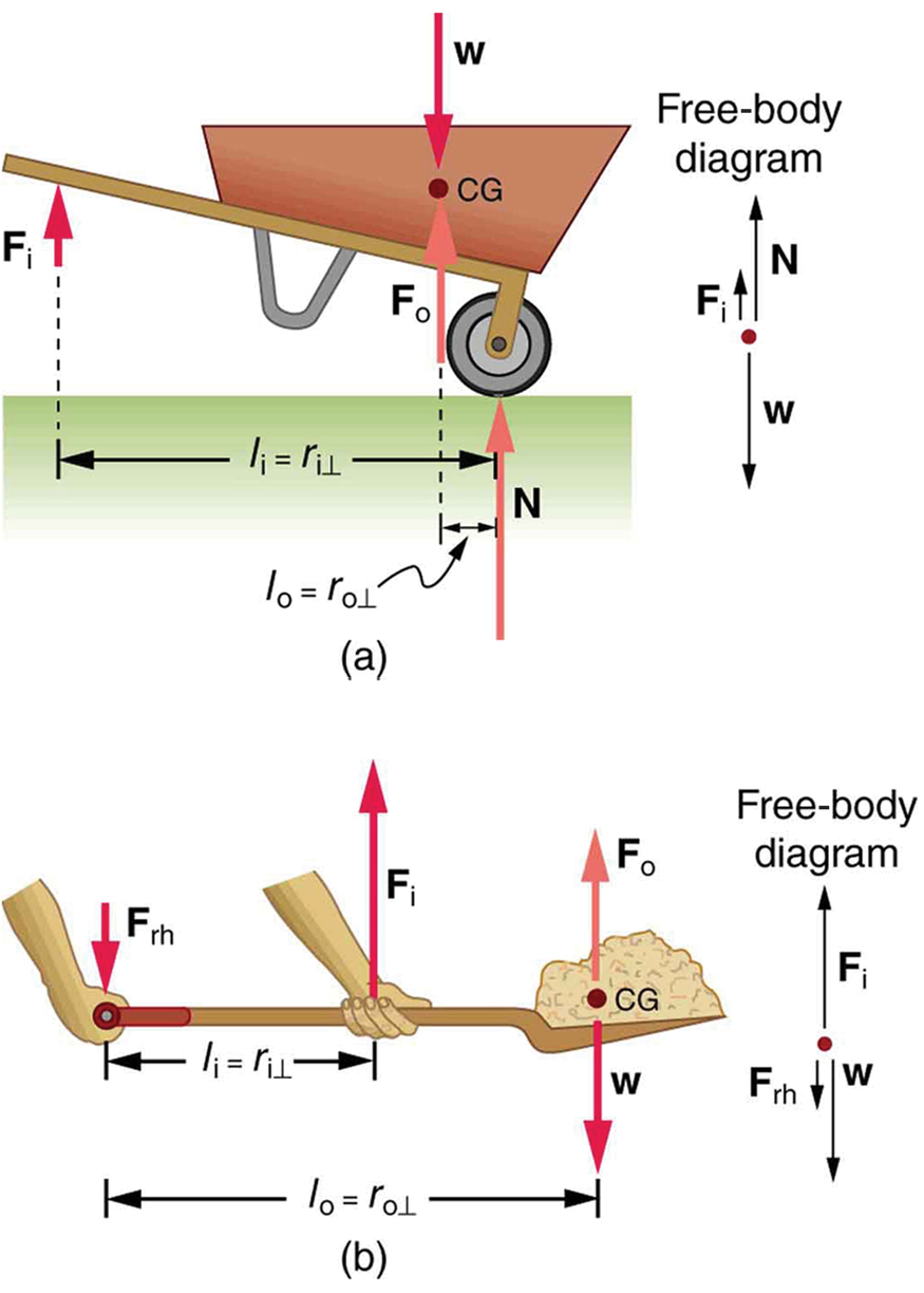 A wheelbarrow is shown in which the input force F sub I is shown as a vector in vertically upward direction below the handle of wheelbarrow. The weight of the wheelbarrow is downward at the center of gravity. The normal reaction of the ground is acting at the wheel in upward direction. The perpendicular distance between the normal reaction and the input force F sub I is labeled as R sub I and the distance between output force F sub O and normal reaction is labeled as R sub O. In figure b, a man is holding a shovel in his hands. One hand is at one end of the handle and the other hand is holding the shovel at the middle. The center of gravity of the shovel is at its flat end. The weight of the shovel is acting at the center of gravity. The input force is acting at the hand in the middle in upward direction and the end of the shovel is acting as pivot. A free body diagram is also shown at the right side of the figure.