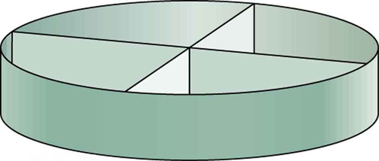 Shows a picture of a small ring shaped section of a cylinder. It is shown to be partitioned in to four equal portions.