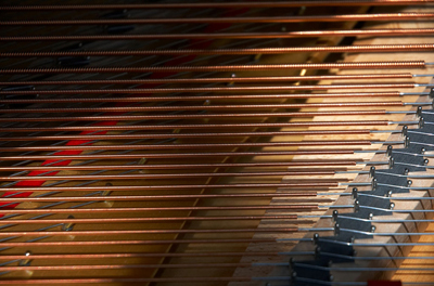 The figure shows the panel of the piano containing the strings, which are visibly in horizontal lines. Just below the strings is the wooden block of the piano containing the different type string handle bars and blocks.