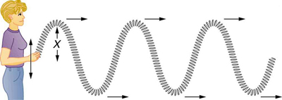 The figure shows a woman holding a long spring in her hand and moving it up and down causing it to move in a zigzag manner away from her. It is an example of a transverse wave, the wave propagates horizontally. The direction of motion of the wave is shown with the help of right arrows at each crest and trough.