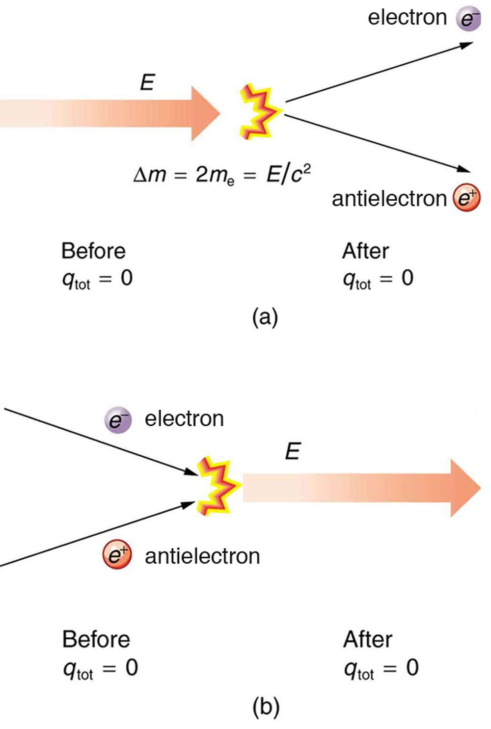 Here energy is shown by a vector. Initially electrostatic charge q tot is equal to zero. Now energy gets converted into matter and creates one electron and antielectron pair but final electrostatic charge is equal to zero so change in mass delta m is equal to two m e, which is equal to E divided by c square. (b) In this figure, Electron and antielectron are colliding with each other. The electrostatic charge q tot before collision is zero and after collision it will remain zero.