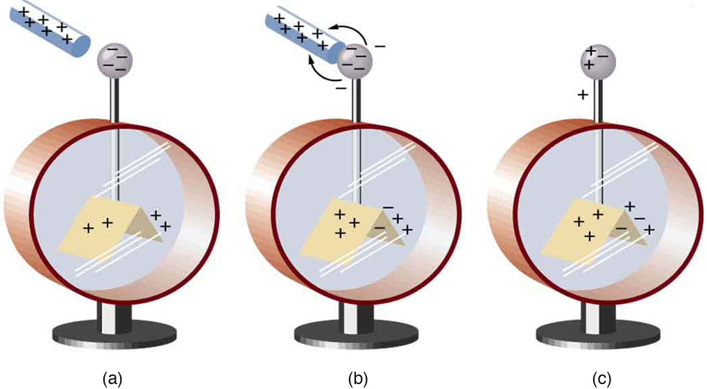 In part a, an electroscope is shown. A glass rod with positive signs is close to the tip of the electroscope which has negative signs on it and the leaves have has plus signs on it. In part b, the glass rod with positive sign is in contact with the tip of electroscope having negative signs. The negative signs are shown moving to the rod by arrows pointing toward the rod. The surfaces of the leaves now have both positive and negative charge. In part c, the glass rod is absent. The tip and the leaves of the electroscope have both positive and negative signs on them.