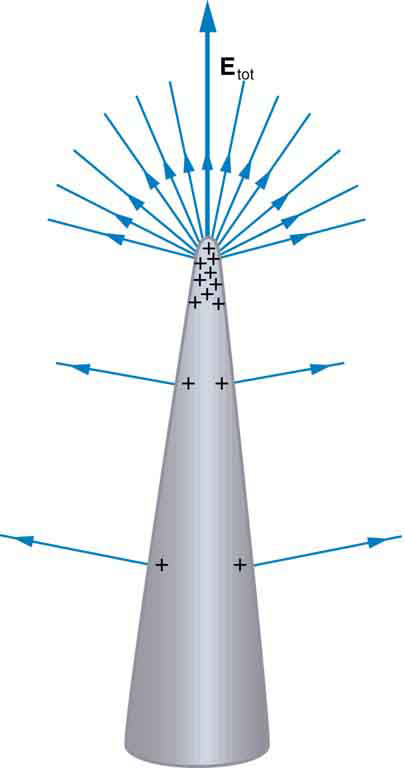 A cone shaped positively charged conductor is shown where most of the positive charges are accumulated at the tip. The field lines represented by arrows emerge at right angles from the surface of the conductor in outward direction. The density of field lines is greater at the tip of the cone than at other surfaces.