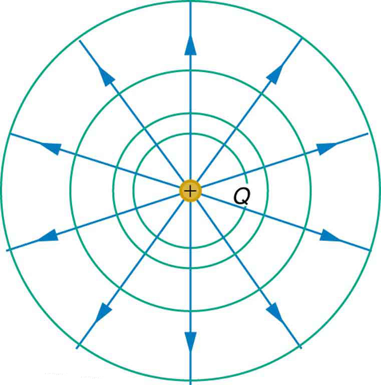 The figure shows a positive charge Q at the center of four concentric circles of increasing radii. The electric potential is the same along each of the circles, called equipotential lines. Straight lines representing electric field lines are drawn from the positive charge to intersect the circles at various points. The equipotential lines are perpendicular to the electric field lines.