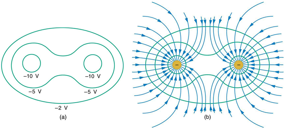 Figure (a) shows two circles, called equipotential lines, along which the potential is negative ten volts. A dumbbell-shaped surface encloses the two circles and is labeled negative five volts. This surface is surrounded by another surface labeled negative two volts. Figure (b) shows the same equipotential lines, each set with a negative charge at its center. Blue electric field lines curve toward the negative charges from all directions.