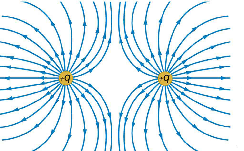 The figure shows two positive charges with electric field lines curving away from each of the charges.