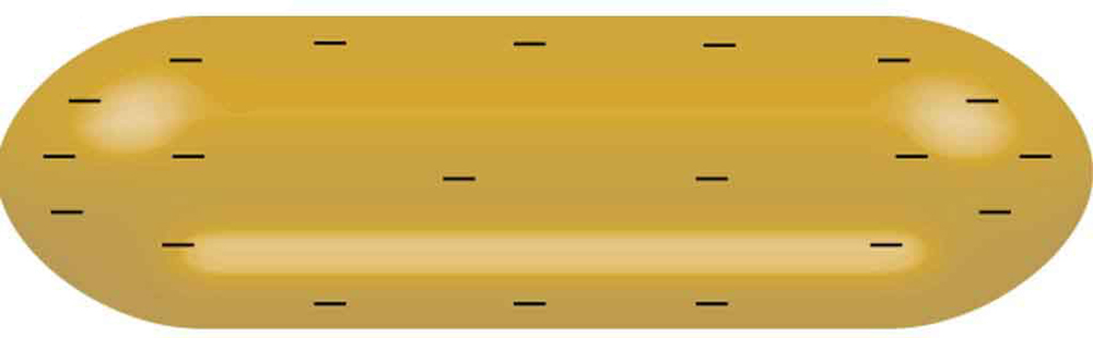 The figure shows a negatively charged conductor that is shaped like an oblong.