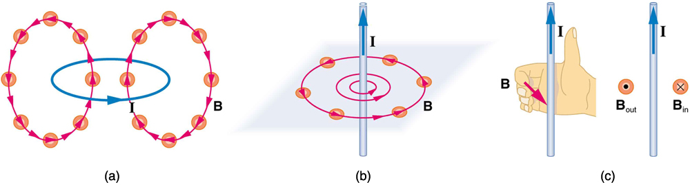 Figure a: magnetic field of a circular current loop with a current moving counter-clockwise. The field lines are also roughly circular, running up through the center of the current loop, and back down outside the loop. Figure b: a straight wire with a current running straight up. The magnetic field lines circle the wire in a counter-clockwise direction. Figure c: a right hand with the thumb pointing up, parallel to a wire with the current running upward. The figures of the hand curl around the wire in the counter-clockwise direction to show the direction of the magnetic field when current is up. The symbol to represent magnetic field lines running out of the surface and toward the viewer—B out—is a circle with a sold circle inside. The symbol to represent magnetic field lines running into the surface and away from the viewer—B in—is represented with a circle with an x inside it. When the current is running straight up, B out is to the left and B in is to the right.