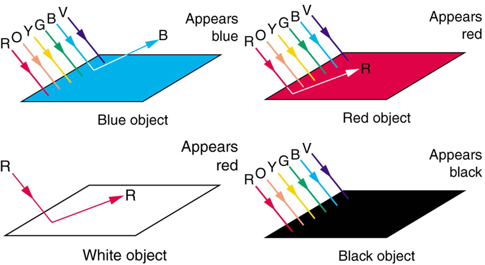 Four flat rectangular structures, named as Blue object, Red object, Black object, and White object are shown. The red, blue, and black objects are illuminated by white light shown by six rays of red, orange, yellow, green, blue, and violet. The blue rectangle is emitting blue ray and it appears blue. The red rectangle is emitting red ray and it appears red while the black rectangle has absorbed all colors and appears black. The white rectangle is illuminated only by red light and emits red ray but appears white.