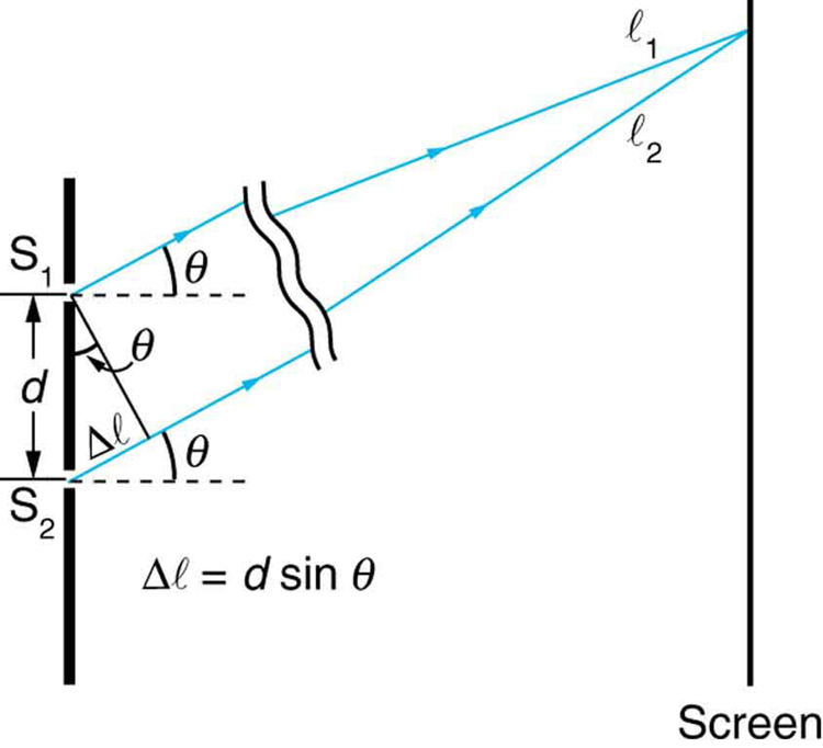 The figure is a schematic of a double slit experiment, with the scale of the slits enlarged to show the detail. The two slits are on the left, and the screen is on the right. The slits are represented by a thick vertical line with two gaps cut through it a distance d apart. Two rays, one from each slit, angle up and to the right at an angle theta above the horizontal. At the screen, these rays are shown to converge at a common point. The ray from the upper slit is labeled l sub one, and the ray from the lower slit is labeled l sub two. At the slits, a right triangle is drawn, with the thick line between the slits forming the hypotenuse. The hypotenuse is labeled d, which is the distance between the slits. A short piece of the ray from the lower slit is labeled delta l and forms the short side of the right triangle. The long side of the right triangle is formed by a line segment that goes downward and to the right from the upper slit to the lower ray. This line segment is perpendicular to the lower ray, and the angle it makes with the hypotenuse is labeled theta. Beneath this triangle is the formula delta l equals d sine theta.