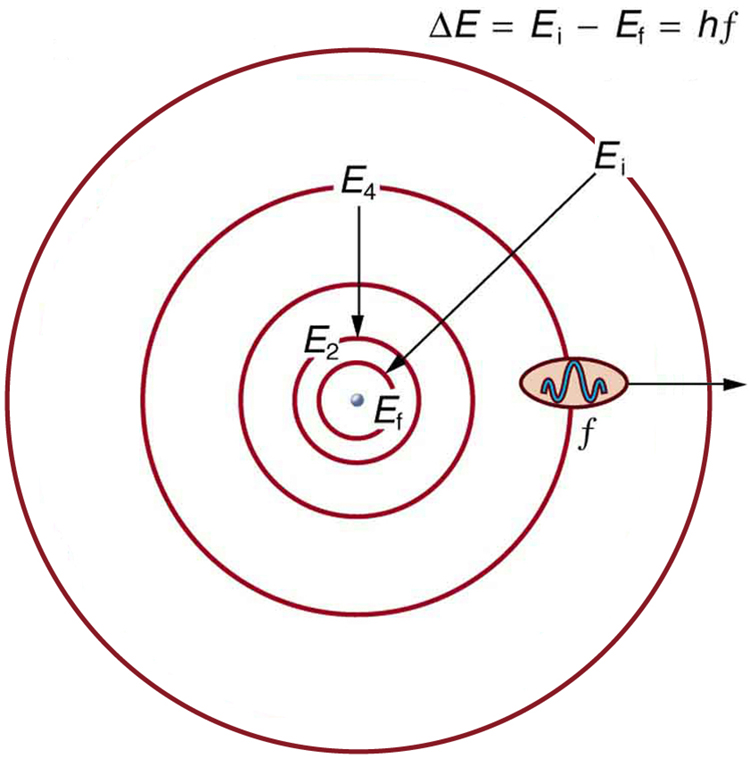 The orbits of Bohr's planetary model of an atom; five concentric circles are shown. The radii of the circles increase from innermost to outermost circles. On the circles, labels E sub one, E sub two, up to E sub i are marked.