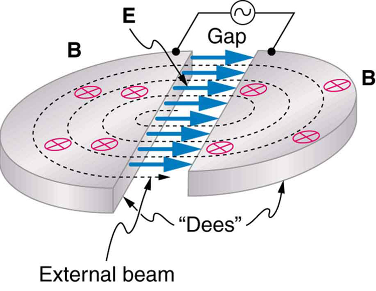 The image shows a disc-shaped cyclotron consisting of two horizontal semicircular plates that are separated by a gap. An alternating voltage is put across the gap, and an electric field is shown going from the left semicircular plate across the gap to the right semicircular plate. A magnetic field pierces the plates from top to bottom. A dotted line labeled external beam spirals outward from the center of the cyclotron, making four revolutions inside the semicircular plates before reaching the outer edge of the cyclotron.
