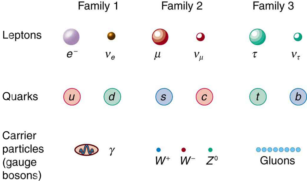 This figure shows three types of particles arranged in three rows. In the top row are leptons, in the middle row are quarks, and in the bottom row are carrier particles. The rows are divided into three columns, with the columns labeled family one, family two, and family three, from left to right. In family one are the electron and electron neutrino, the up and down quarks, and the photon and upsilon. In family two are the muon and muon neutrino, the strange and charmed quarks, and the W plus, W minus, and Z zero. In family three are the tau and tau neutrino, the top and bottom quarks, and gluons.