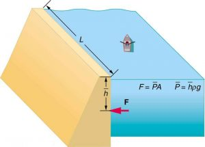 Example: Calculating the Average Pressure and Force Exerted: What Force Must a Dam Withstand?