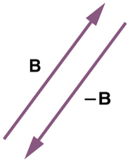 Two vectors are shown. One of the vectors is labeled as vector in north east direction. The other vector is of the same magnitude and is in the opposite direction to that of vector B. This vector is denoted as negative B.