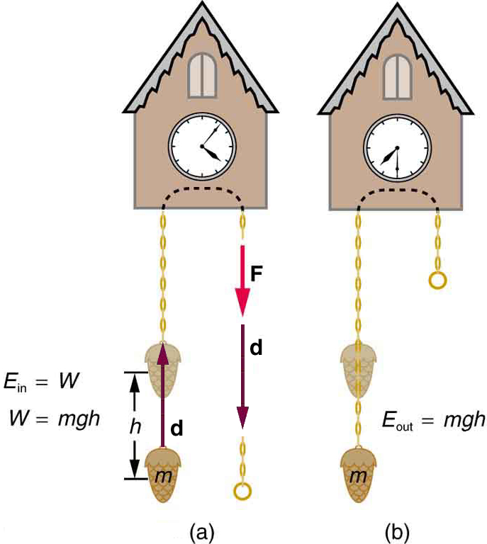 (a) The weight attached to the cuckoo clock is raised by a height h shown by a displacement vector d pointing upward. The weight is attached to a winding chain labeled with a force F vector pointing downward. Vector d is also shown in the same direction as force F. E in is equal to W and W is equal to m g h. (b) The weight attached to the cuckoo clock moves downward. E out is equal to m g h.