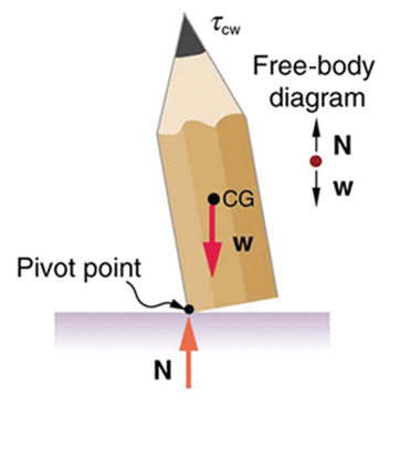 A pencil is tilted slightly toward left. The left end point of its flat surface is marked as the pivot point. The weight W of the pencil is acting at the center of gravity of the pencil. The normal reaction N of the pencil is acting upward at the pivot point. The line of action of the normal reaction is toward left of the line of action of the weight of the pencil.