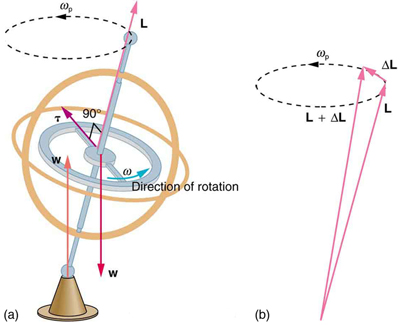 In figure a, the gyroscope is rotating in counter clockwise direction. The weight of the gyroscope is acting downward. The supportive force is acting at the base. The line of action of the weight and supportive force are different. The torque is acting along the radius of the horizontal circular part of gyroscope. In figure b, the two vectors L and L plus delta L are shown. The vectors start from a point at the bottom of the figure and terminate at two points on a horizontal dotted circle, directed in counter clockwise direction, at the top of the figure. Another vector delta L starts from the head of vector L and terminates at the head of vector L plus delta L.