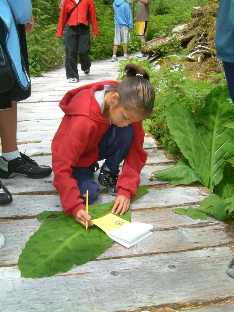 Student measuring Skunk Cabbage with a ruler in the field notebook