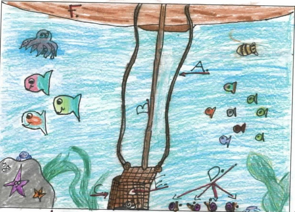 Drawing by Grade 6/7 student depicting device for harvesting dentalia