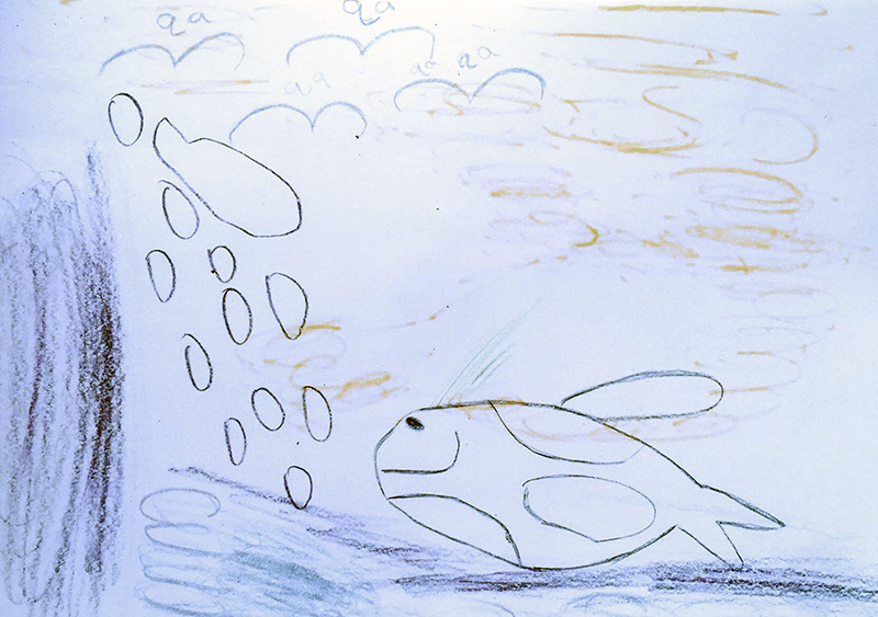 A child's drawing of fish