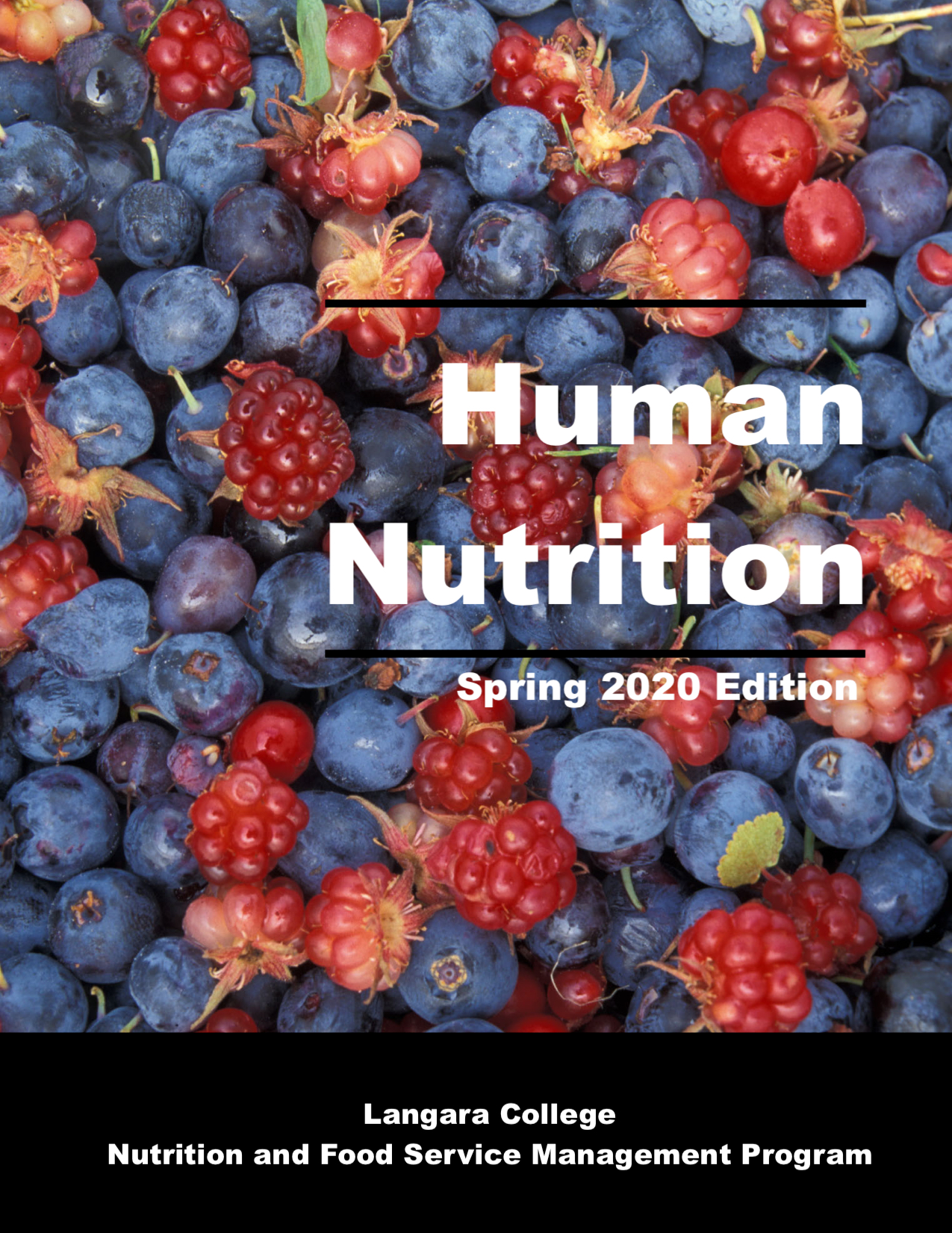 Cover image for Human Nutrition