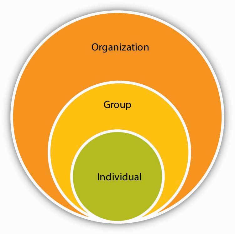 1.1 Understanding Organizational Behaviour