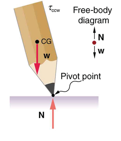 A vertical pencil tilted toward left is shown. The sharp end of the pencil is down and labeled as pivot point. The weight of the pencil is acting at its center of gravity and the line of action of the weight is toward left of the pivot point.