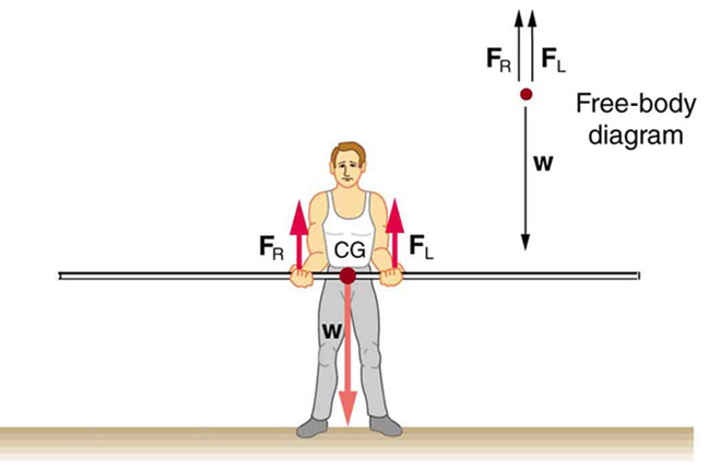 A pole vaulter is standing on the ground holding a pole with his two hands. The center of gravity of the pole is between the hands of the pole vaulter and is near the right hand of the man. The weight W is shown as an arrow downward toward center of gravity. The reactions F sub R and F sub L of the hands of the man are shown with vectors in upward direction. A free body diagram of the situation is shown on the top right side of the figure.