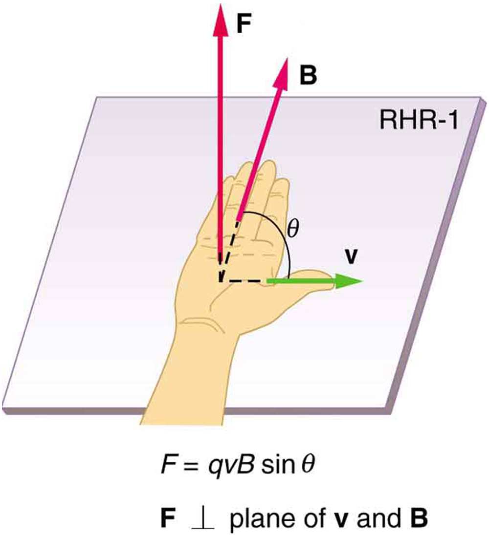 The right hand rule 1. An outstretched right hand rests palm up on a piece of paper on which a vector arrow v points to the right and a vector arrow B points toward the top of the paper. The thumb points to the right, in the direction of the v vector arrow. The fingers point in the direction of the B vector. B and v are in the same plane. The F vector points straight up, perpendicular to the plane of the paper, which is the plane made by B and v. The angle between B and v is theta. The magnitude of the magnetic force F equals q v B sine theta.
