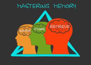 Mastering Memory: Encode, store, retrieve