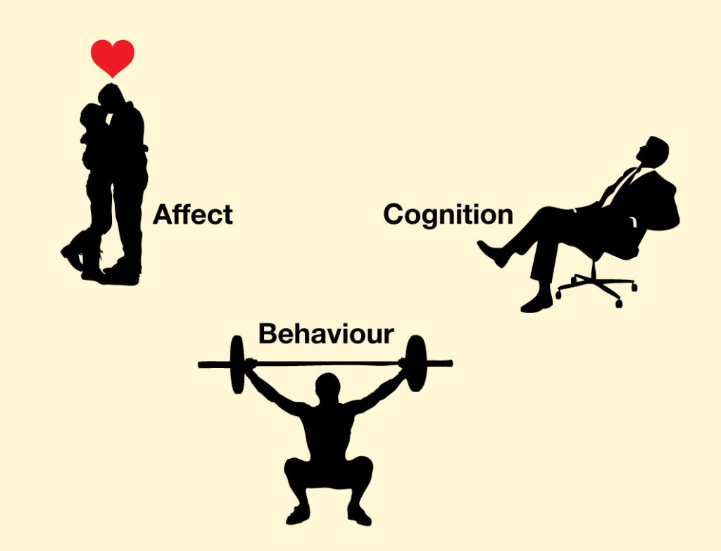 Human beings rely on the three capacities of affect, behavior, and cognition, which work together to help them create successful social interactions.